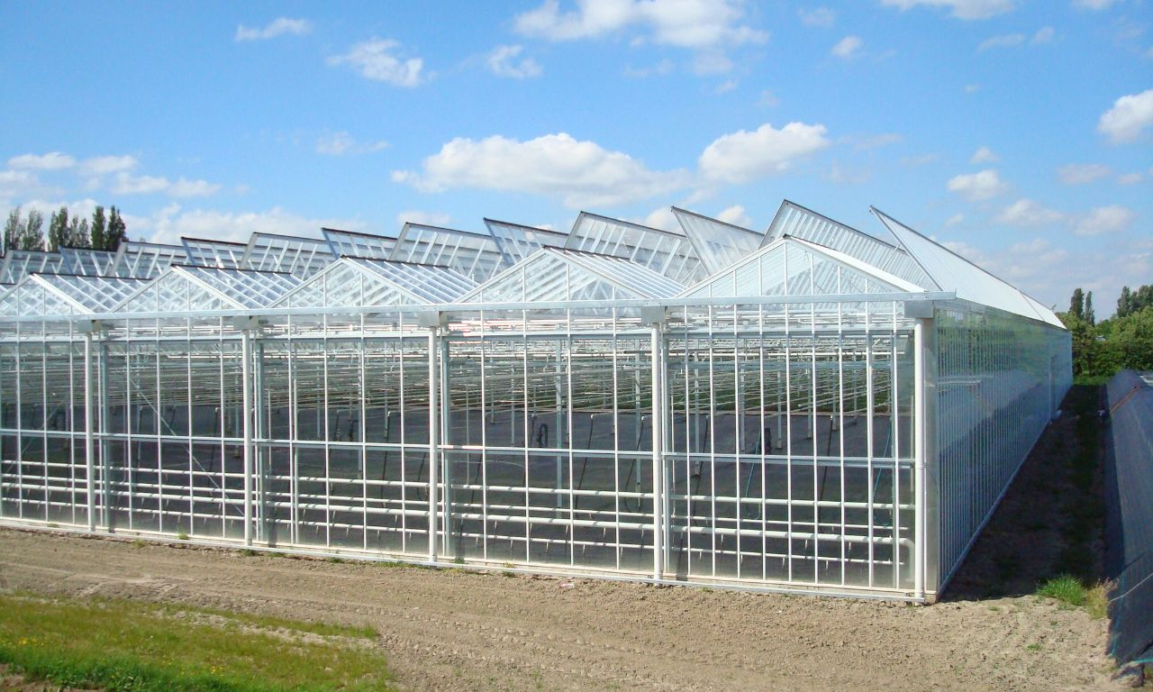 Open Roof Greenhouses Prins Greenhouses