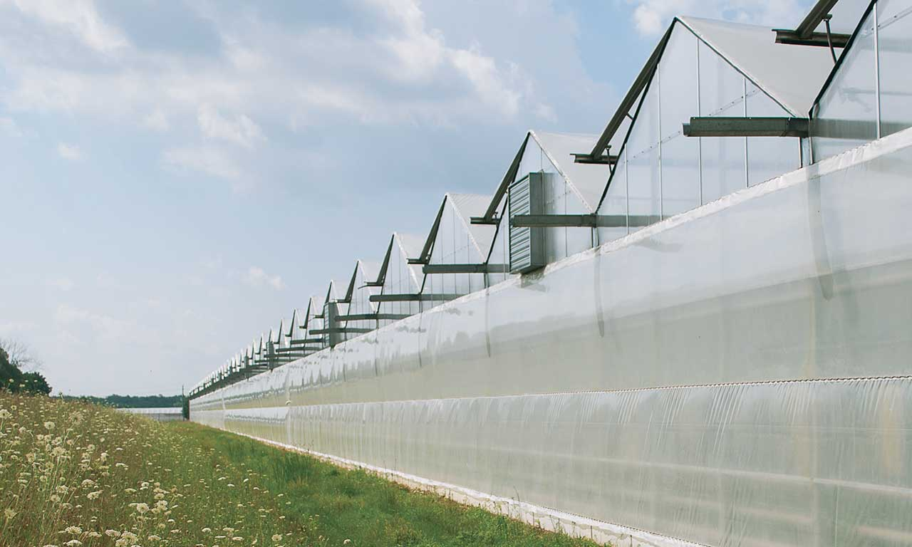 Poly Gutter Connect Greenhouse