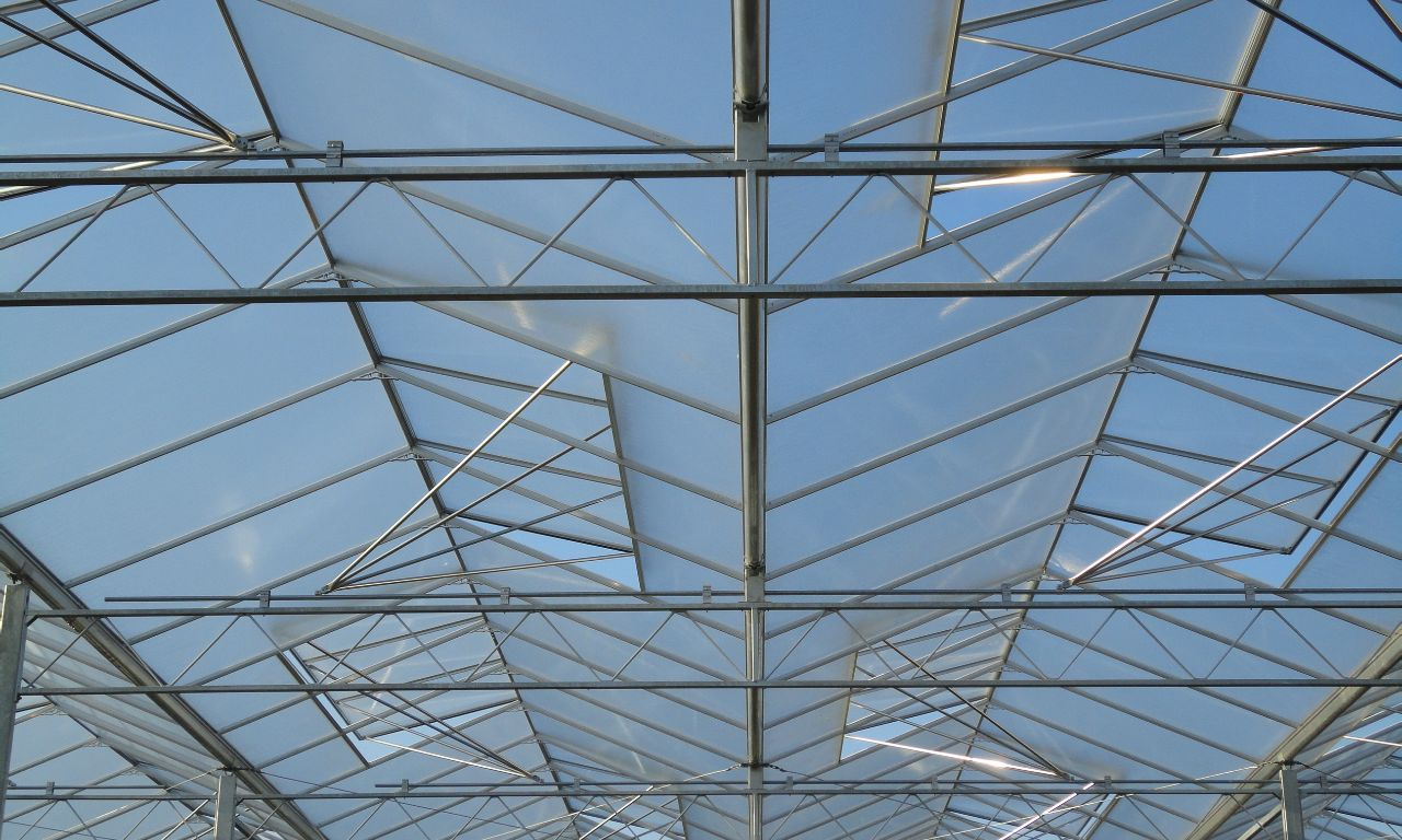 Venlo-Greenhouses-10