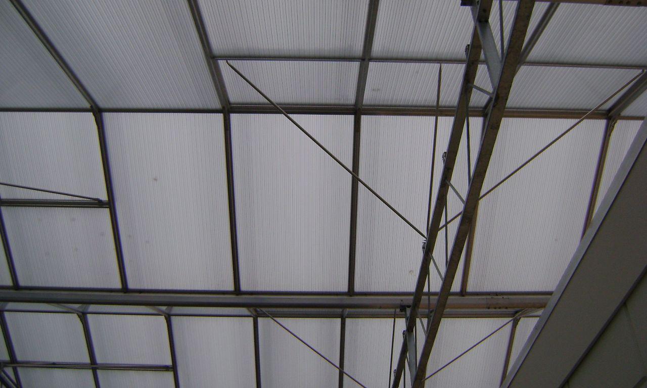Venlo-Greenhouses-13
