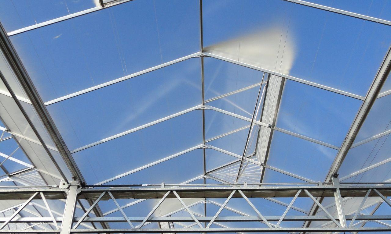 Venlo-Greenhouses-16