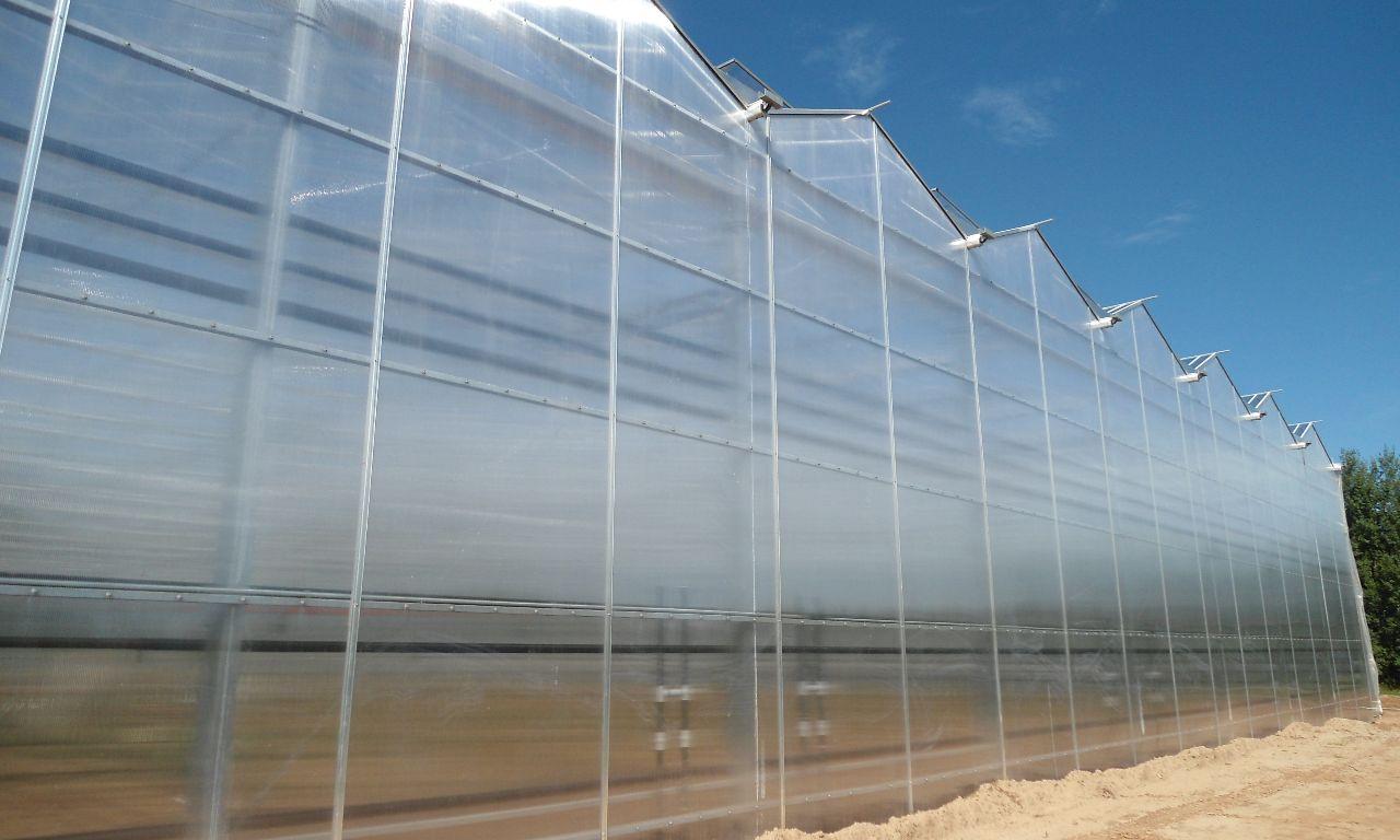 Venlo-Greenhouses-20