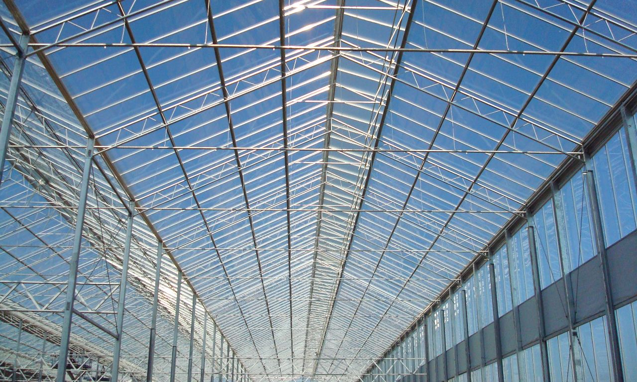 Wide-Span-Greenhouses-02