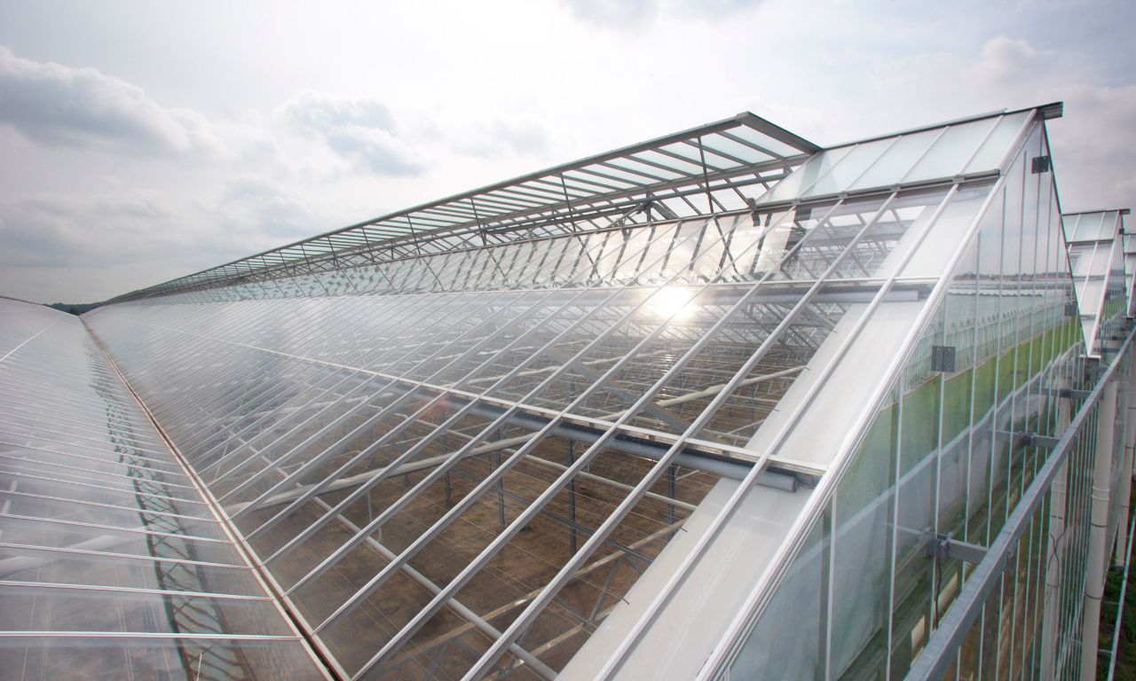 Wide Span Greenhouses Prins Greenhouses
