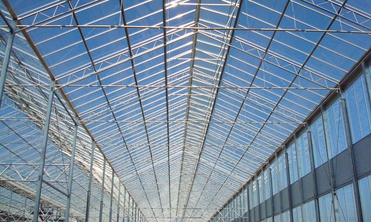 Wide-Span Greenhouses | Prins Greenhouses