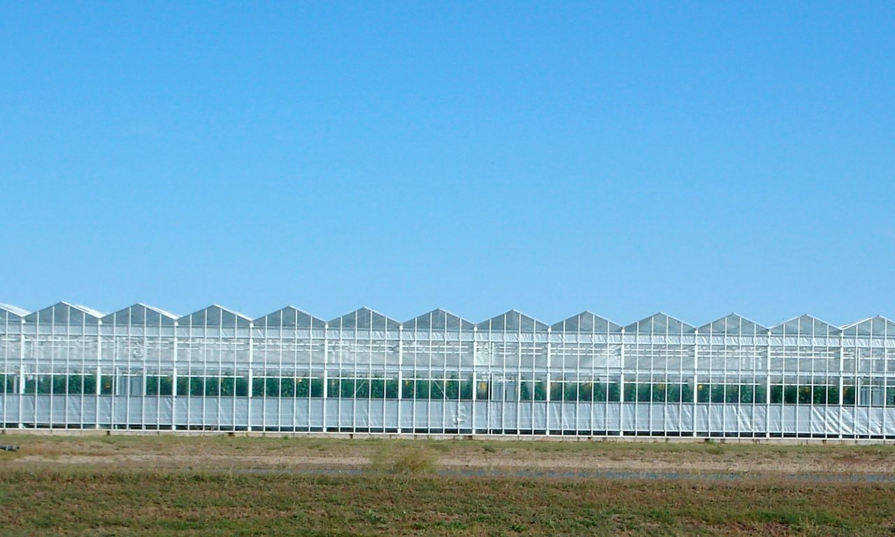 Curtain Systems   Prins Greenhouses